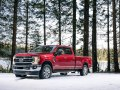 Ford F-250 Super Duty IV Crew Cab (facelift 2020) - Foto 3