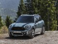 Mini Countryman (F60, Facelift 2020) - Foto 5