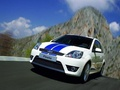 Ford Fiesta VI (Mk6, 5 door) 1.4 Duratec (80 Hp)